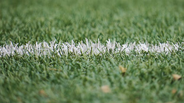 Do The Positives Outweigh The Negatives With Synthetic Turf Installation in Sydney?